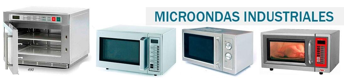 Microondas Industrial